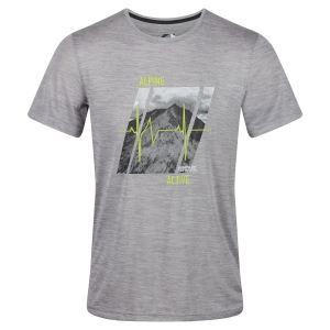 Pánské tričko Regatta FINGAL V šedá