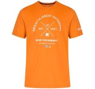 Pánské triko Regatta Cline oranžová