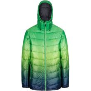 Pánská zimní bunda Regatta AZUMA II zelená/modrá