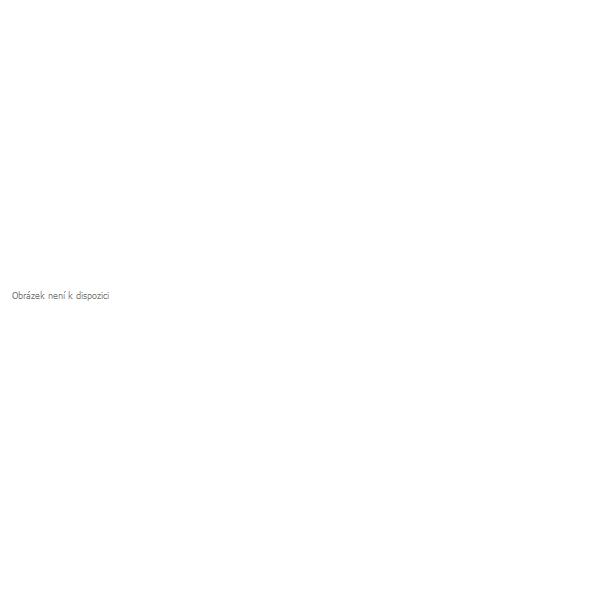 Dětská zimní lyžařská bunda KILPI GENOVESA-JG bílá